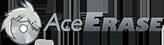 File Shredder Internet History Eraser - AceErase